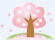 新宿御苑の桜の開花はいつ頃?花見時期は混雑する?アクセス方法は?