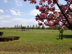 矢橋帰帆島公園 広場