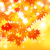 京都の紅葉!光明寺の見頃と周辺観光スポット