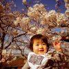 お花見赤ちゃん連れの時の授乳は?子連れで役立つ持ち物と楽しむための注意点